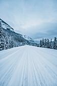 Icefields Parkway, Banff National Park, Jasper National Park, Alberta, Kanada, north america