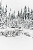 bridge at Emerald Lake, Emerald lake, Yoho National Park, British Columbia, Kanada, north america