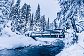 man on a bridge at Emerald Lake, Emerald lake, Yoho National Park, British Columbia, Kanada, north america