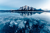 gas bubbles at Abraham Lake, Jasper National Park, Alberta, Kanada, north america