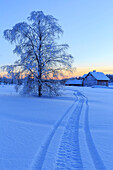 House in the taiga at the border between Sweden and Finland, Hukanmaa/Kitkiojoki, Norbottens Ian, Lapland, Sweden, Scandinavia, Europe