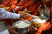 Buddhist monks on morning alms round in Western Cambodia, Indochina, Southeast Asia, Asia