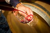 eine Nahaufnahme der Wein Qualitätskontrolle, Bozen Provinz, Südtirol, Trentino Alto Adige, Italien