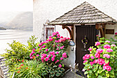 Detail über den blühenden Eingang eines Hauses im Dorf Hallstatt, Oberösterreich, Region Salzkammergut, Österreich