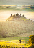 Podere Belvedere, the famous italian farmhouse, during sunrise, Val d'Orcia, Siena province, Tuscany, Italy