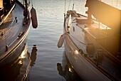 Festgemachte Vintage Segelboote am frühen Morgen, Detail. Hafen von Mahó, Menorca, Balearen, Spanien