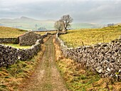 Old Barn on Goat Scar Lane above Stainforth in Ribblesdale Yorkshire Dales England.