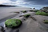 Der malerische Otter Rock Strand am Morgen nördlich von Newport, Oregon.