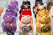 France. Paris 13th district. Parisian Chinatown. Small Japanese cats lucky charm in a store, avenue de Choisy