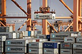 Maersk container ships at the port of Salalah Oman Middle East.