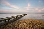 Jadebusen im Morgenlicht, Nationalpark Wattenmeer, Nordsee, Dangast, Varel, Landkreis Friesland, Niedersachsen, Deutschland