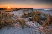Sunset over sand dune at the German North Sea, Wattenmeer National Park, Schillig, Wangerland, Landkreis Friesland, Lower Saxony, Germany