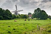 Windmill Werdum, Esens, Wittmund, Ostfriesland, Lower Saxony, Germany