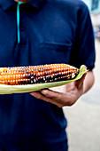 Mid section photograph of Nepali man holding roasted corn at market in Chabahil, Kathmandu, Nepal