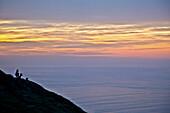 Naturfotografie mit Schattenbildern von Rotwild auf Abhang bei Sonnenaufgang, Punkt Reyes National Seashore, Kalifornien, USA.