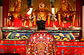 Person wearing ornate robe in temple