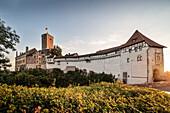 UNESCO World Heritage Wartburg castle, Eisenach, Thuringia, Germany