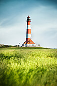UNESCO World Heritage the Wadden Sea, Westerheversand lighthouse surrounded by salt meadows, Westerhever, Schleswig-Holstein, Germany, North Sea
