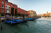 Palaces along the Canal Grande, gondolas, Ponte di Rialto, Rialto bridge, Canal Grande, Venezia, Venice, UNESCO World Heritage Site, Veneto, Italy, Europe