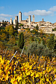 townscape with towers, vineyard, San Gimignano, hilltown, UNESCO World Heritage Site, province of Siena, autumn, Tuscany, Italy, Europe