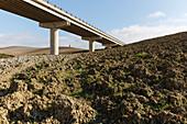 Brücke, Schnellstraße, Zypresse, Crete Senesi, near S. Quirico d´Orcia, Herbst, Val d´Orcia, UNESCO Weltkulturerbe, Toskana, Italien, Europa