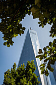 perspective of the one world trade center tower from the memorial devoted to the september 11, 2001 terrorist attacks, ground zero, downtown manhattan, new york city, state of new york, united states, usa