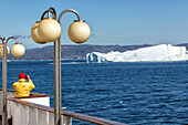 passenger aboard the astoria, discovery of the ice fjord, jakobshavn glacier, 65 kilometres long, coming from the inlandsis, sermeq kujalleq, ilulissat, greenland