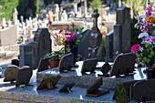 France, Southern France, Saint-Pons-de-Thomieres, cemetery