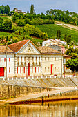 France, Gironde, Castillon-la-Bataille, AOC Castillon Cotes de Bordeaux vine and wine-warehouse on the shore of the Dordogne river