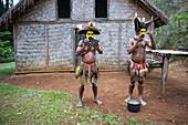 Huli man make-up and headdress, Tari, Papua New Guinea