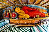 Reclining Buddha, Isurumuniya Temple, Anuradhapura, Sri Lanka, Anuradhapura is one of the ancient capitals of Sri Lanka, famous for its well-preserved ruins of an ancient Sri Lankan civilization