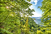 View from Koenigsstuhl, Stubbenkammer, Jasmund National Park, Ruegen Island, Mecklenburg-Western Pomerania, Germany