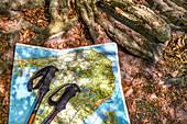 Map and walking sticks, Ruegen Island, Mecklenburg-Western Pomerania, Germany