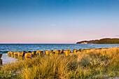 Beach with beach chairs, Binz, Ruegen Island, Mecklenburg-Western Pomerania, Germany