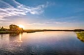 Lake in the evening light, Neuensiener See, Ruegen Island, Mecklenburg-Western Pomerania, Germany