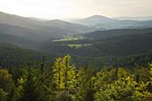 View over Lamer Winkel towards Hoher Bogen, Bavarian Forest, Bavaria, Germany