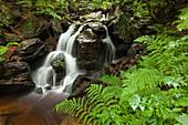 Hoellbachgspreng cascade, hiking path to Grosser Falkenstein, Bavarian Forest, Bavaria, Germany