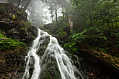 Hoellbachgspreng cascade, hiking path to Grosser Falkenstein, Bavarian Forest, Bavaria, Germany
