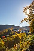 Schmallenberg-Nordenau, Rothaar mountains, Sauerland, North Rhine-Westphalia, Germany