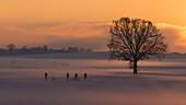 sunset in wintertime near Frieding, Bavaria, Germany