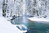 Gorge Eistobel in wintertime, Isny, Allgäu region, Germany