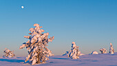 Moon and warm light on the snow-covered hills of Luosto, finnish Lapland