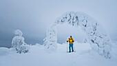 Schneeschuh Wanderung durch die tief verschneiten Bäume des Pyhä-Luosto Nationalparks, finnisch Lappland
