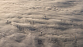 wind farm in dense ground fog, Düsseldorf Ruhr area, Germany