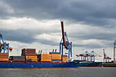 Loading cranes, Port of Hamburg, Container port, Elbe, Hamburg, Germany