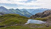 Alpine Wiese, Bergsee, Sommerblumen, Sommerwiese, Wanderurlaub, Natur, Hüttentour, Pause, Wanderwege, Oberallgäu, Alpen, Bayern, Oberstdorf, Deutschland