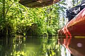 Biosphärenreservat Spreewald, Unterspreewald, Brandenburg, Deutschland, Wasserwandern, Kajaktouren, Naherholungsgebiet, Familienurlaub, Familienausflug, Paddeln, Rudern, Wildnis, Ausflug, Tagesauflug, Flusslandschaft, Buchenhain, Kajakfahrer, Tourismus