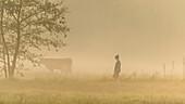 Biosphärenreservat Spreewald, Unterspreewald, Brandenburg, Deutschland, Wasserwandern, Kajaktouren, Naherholungsgebiet, Familienurlaub, Familienausflug, Wandern, Spazieren, Wildnis, Ausflug, Tagesauflug, Erholung, Tourismus