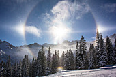 Germany, Bavaria, Alps, Oberallgaeu, Oberstdorf, Winter Landscape, Winter Holidays, Winter Sports, Snow, Mountains, Sun Reflection and Mountain Panorama, Coniferous Forest