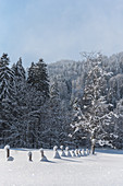 Germany, Bavaria, Alps, Oberallgaeu, Oberstdorf, Stillachtal, winter landscape, pasture fence, winter holidays, snow, mountains, coniferous forest and fence covered with snow
